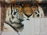 http://images.vfl.ru/ii/1517214305/2f0b095a/20353035_s.jpg