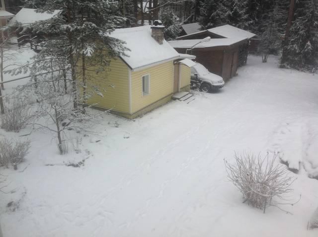 http://images.vfl.ru/ii/1517220313/1ad1d56e/20354396_m.jpg
