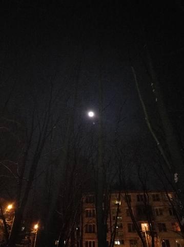 http://images.vfl.ru/ii/1517436196/783a3299/20390721_m.jpg
