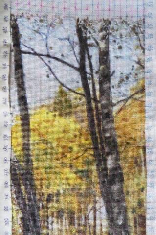 http://images.vfl.ru/ii/1517605623/558a9748/20421599_m.jpg