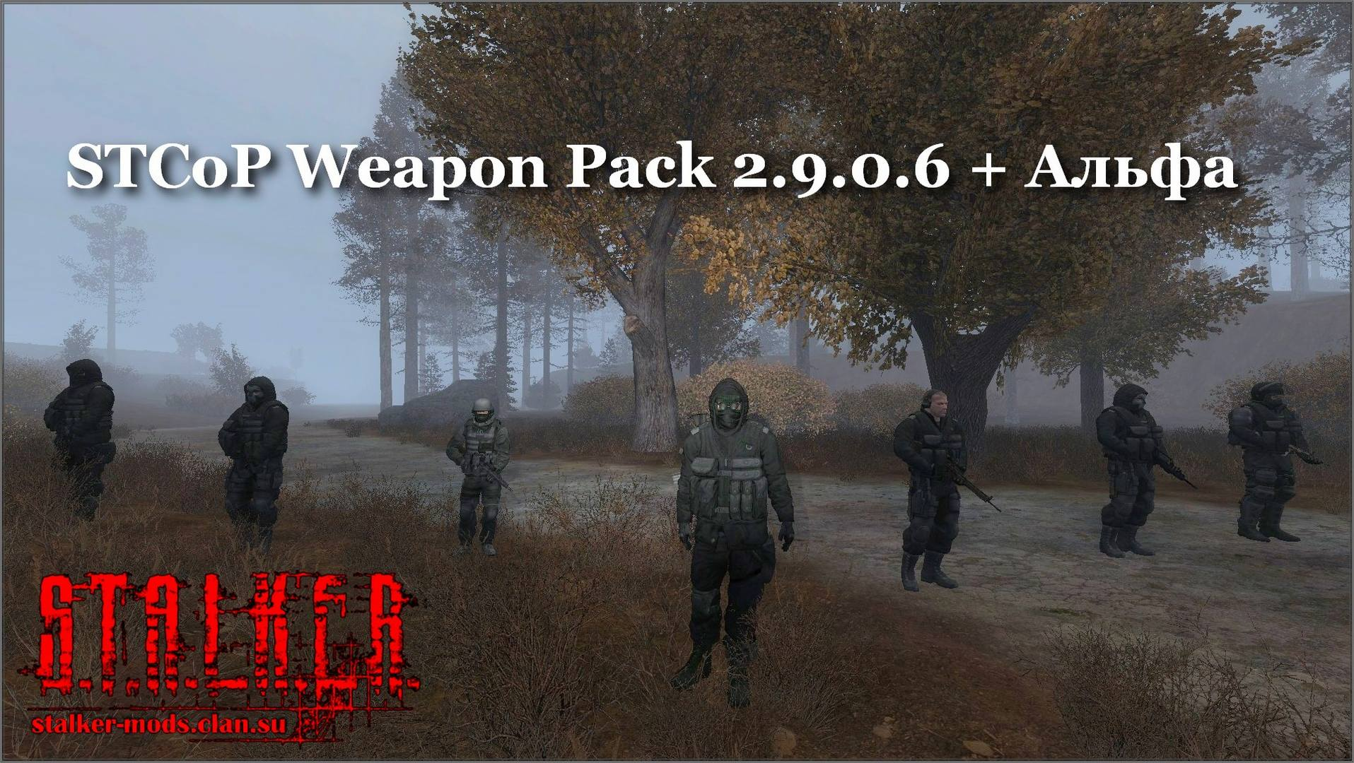 STCoP Weapon Pack 2.9.0.6 + Альфа