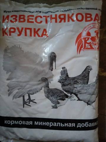 Расклев цыплят - Страница 3 20454405_m
