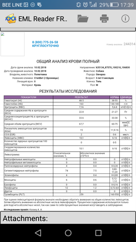 http://images.vfl.ru/ii/1518420301/88d02320/20551187_m.png