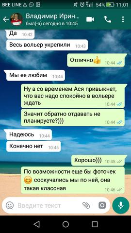 http://images.vfl.ru/ii/1518435736/5c1e62cf/20554429_m.png
