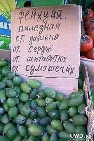 http://images.vfl.ru/ii/1518448897/049e6f68/20557414_m.jpg