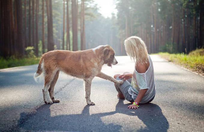 http://images.vfl.ru/ii/1518544725/8b2f8bb4/20574623_m.jpg