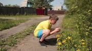 http//images.vfl.ru/ii/1518977774/09b85f/20641338_m.jpg