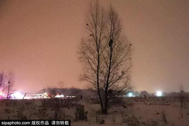 http://images.vfl.ru/ii/1518988811/914137a1/20643467_m.jpg