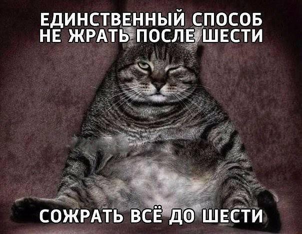 http://images.vfl.ru/ii/1520022297/38290b1b/20801987_m.jpg