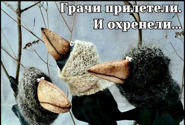 http://images.vfl.ru/ii/1520072518/66b9d518/20807141_m.jpg