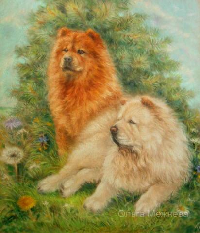 Рисую собак по фото - Страница 17 20832890_m