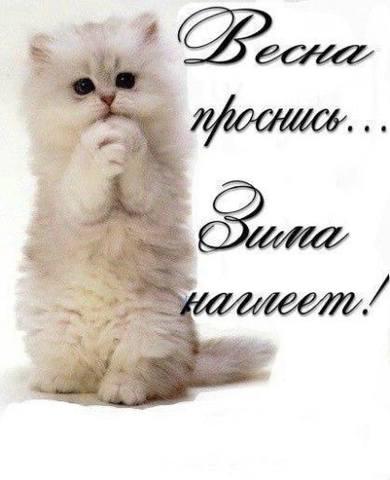 http://images.vfl.ru/ii/1520367028/3907a2b7/20852325_m.jpg