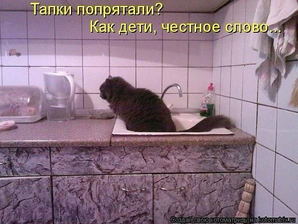 http://images.vfl.ru/ii/1520505250/366d3072/20871270_m.jpg
