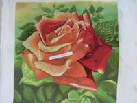 http://images.vfl.ru/ii/1520532484/4c91f69d/20875912_s.jpg