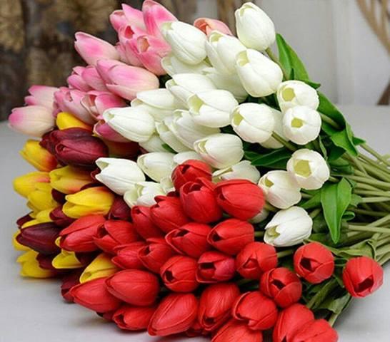 http://images.vfl.ru/ii/1520533415/0d11d80b/20876058_m.jpg