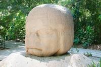 Ольмекская каменная голова в Ла-Венте. Фото Морошкина В.В.