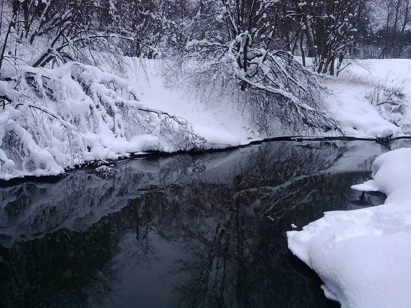 http://images.vfl.ru/ii/1521112673/fcc39795/20966405_m.jpg
