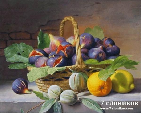 http://images.vfl.ru/ii/1521913767/a655f9cb/21098592_m.jpg