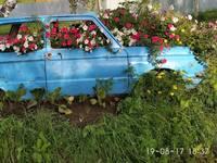 http://images.vfl.ru/ii/1521953465/1c76409d/21102823_s.jpg