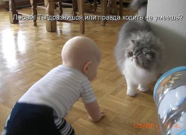 http://images.vfl.ru/ii/1522271923/967c31ea/21154206_m.jpg