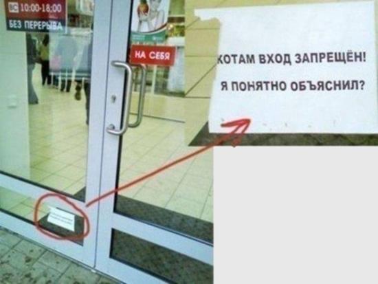 http://images.vfl.ru/ii/1522358106/d66d235e/21168963.jpg
