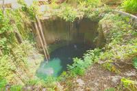 Сенот Ик-Киль с очень чистой водой, служащий купальней. Фото Морошкина В.В.