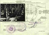 http://images.vfl.ru/ii/1522944989/7270d5f3/21265280_s.jpg