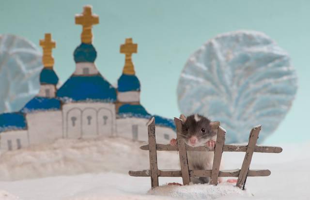 http://images.vfl.ru/ii/1523060824/6bc3570c/21280969_m.jpg