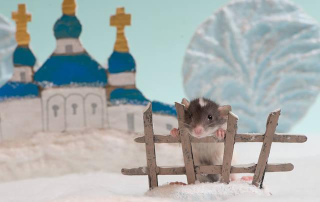 http://images.vfl.ru/ii/1523060824/ccc52609/21280970_m.jpg