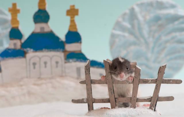 http://images.vfl.ru/ii/1523060824/f429d37b/21280971_m.jpg