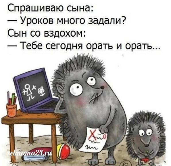 http://images.vfl.ru/ii/1523131292/051db7ca/21290818_m.jpg