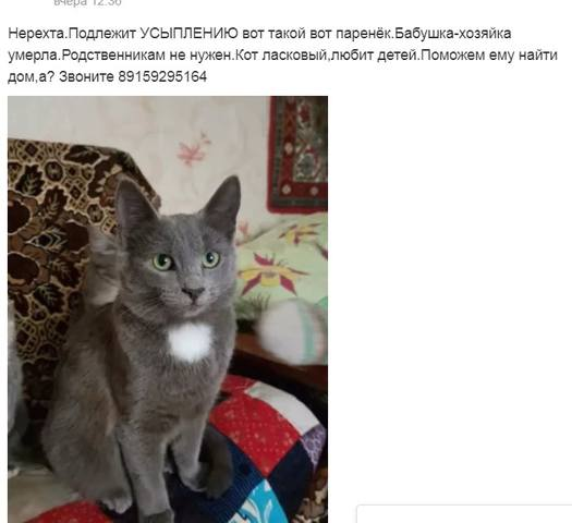 http://images.vfl.ru/ii/1523257348/c4e9128c/21304437_m.jpg