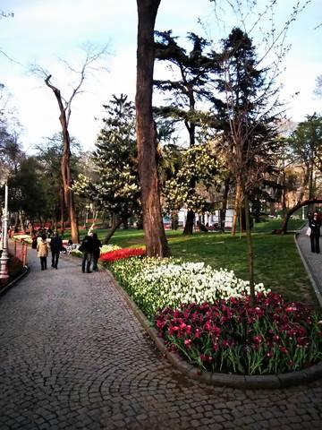 Стамбульские зарисовки - Страница 2 21311832_m