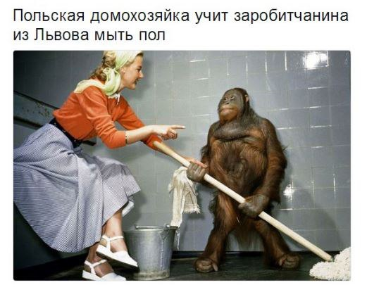 http://images.vfl.ru/ii/1523757255/371ba45b/21376926.jpg