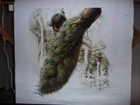 http://images.vfl.ru/ii/1524983435/aca7164e/21547987_s.jpg