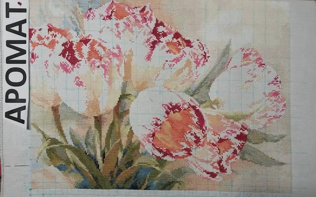 http://images.vfl.ru/ii/1525251829/1a86cb0b/21583427_m.jpg