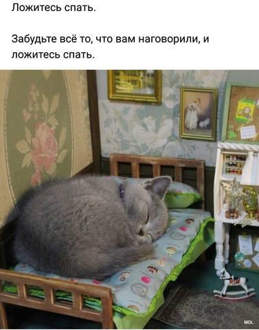 http://images.vfl.ru/ii/1525283117/d7a56715/21590031_m.jpg