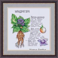http://images.vfl.ru/ii/1525494140/b078da3a/21619455_s.jpg