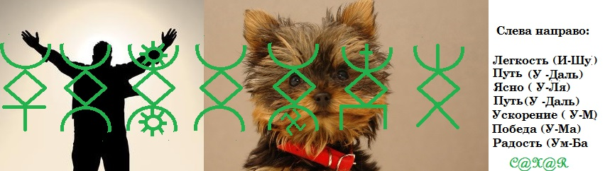 Пропала собака...Автор Сахар