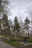 http://images.vfl.ru/ii/1526299109/bdd8a117/21737660_s.jpg