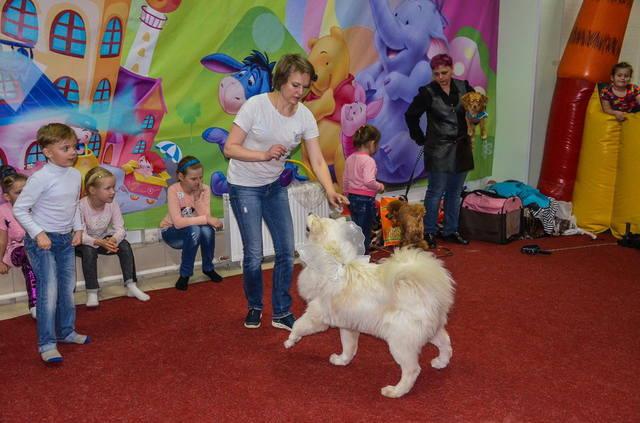 http://images.vfl.ru/ii/1526457138/5ff98656/21762853_m.jpg