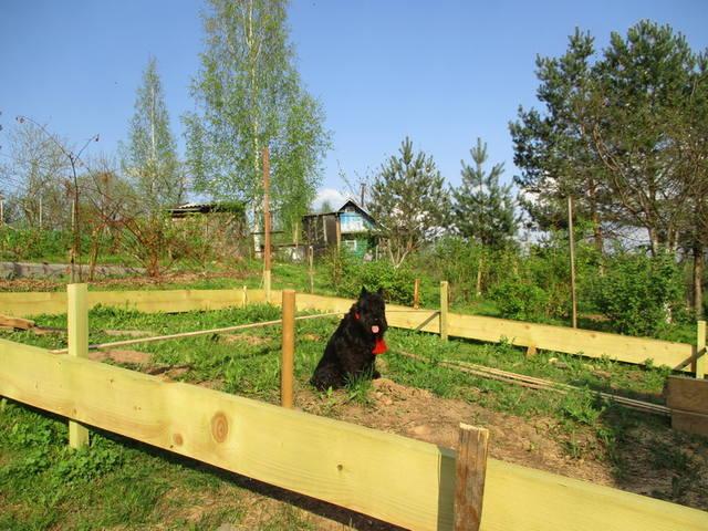 http://images.vfl.ru/ii/1527234515/7b169b9e/21874636_m.jpg