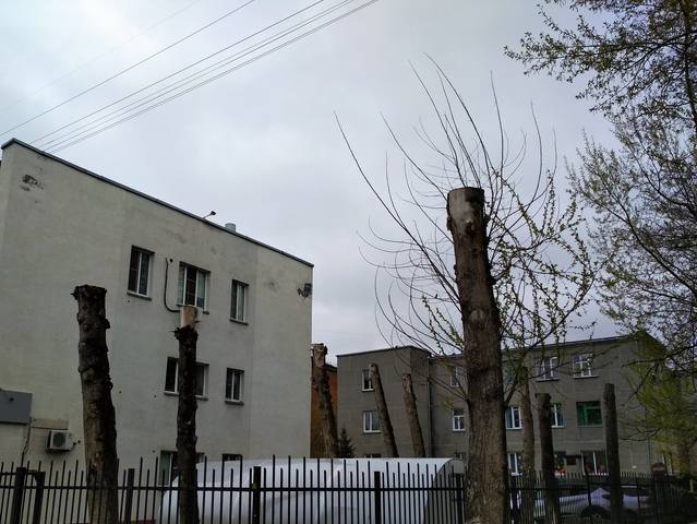 http://images.vfl.ru/ii/1527235035/87428912/21874737_m.jpg