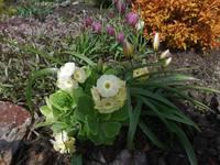 Весна идет!!! - Страница 2 21925480_s