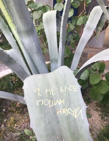 Ботаника, однако!