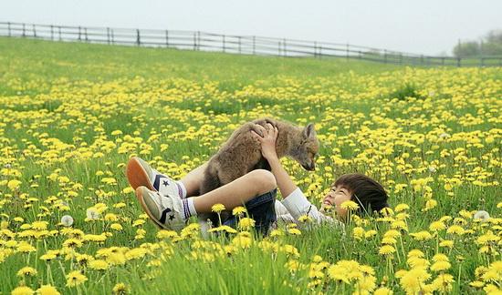 http//images.vfl.ru/ii/15281431/4a1b4b42/220318.jpg