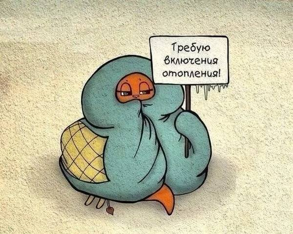 http://images.vfl.ru/ii/1528696998/aa814ff1/22070370_m.jpg