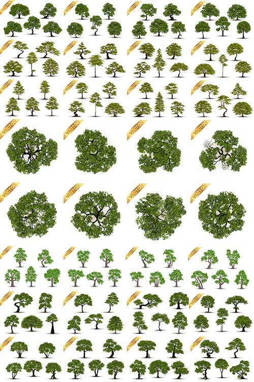 Деревья в векторе / Trees in vector