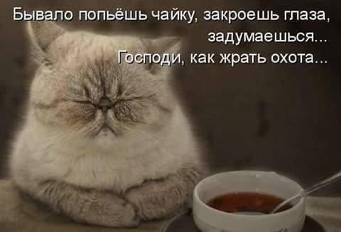 Чайная беседка