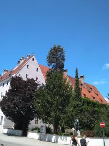 Немного о Германии - Страница 11 22172257_m
